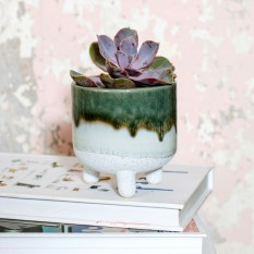 Hampers and Gifts to the UK - Send the Mojave Glaze Green Planter