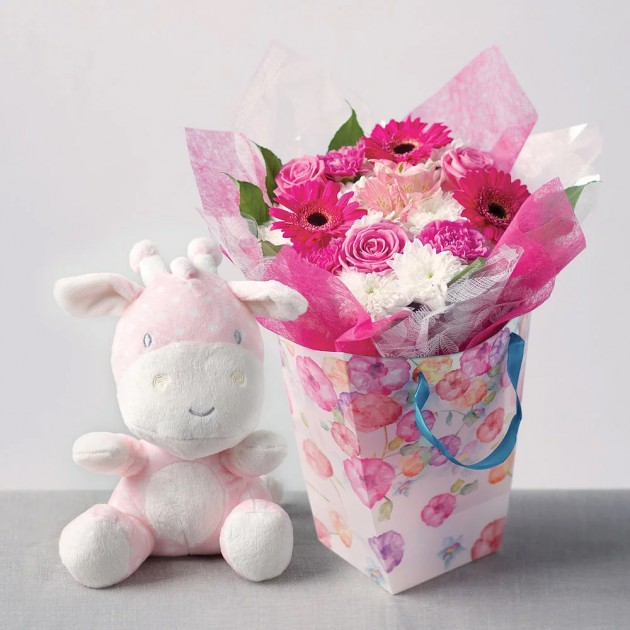 Hampers and Gifts to the UK - Send the Baby Girl Floral Wonder