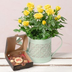 Hampers and Gifts to the UK - Send the Birthday Rose Sweet Surprise