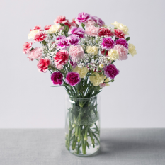 Hampers and Gifts to the UK - Send the Carnation Paradise Flowers