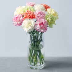 Hampers and Gifts to the UK - Send the Carnation Posy