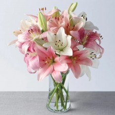 Hampers and Gifts to the UK - Send the Marshmallow Lillies