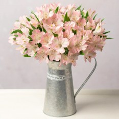 Hampers and Gifts to the UK - Send the Simply Alstroemeria