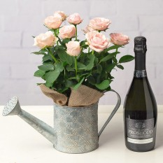 Hampers and Gifts to the UK - Send the Roses and Prosecco Gift