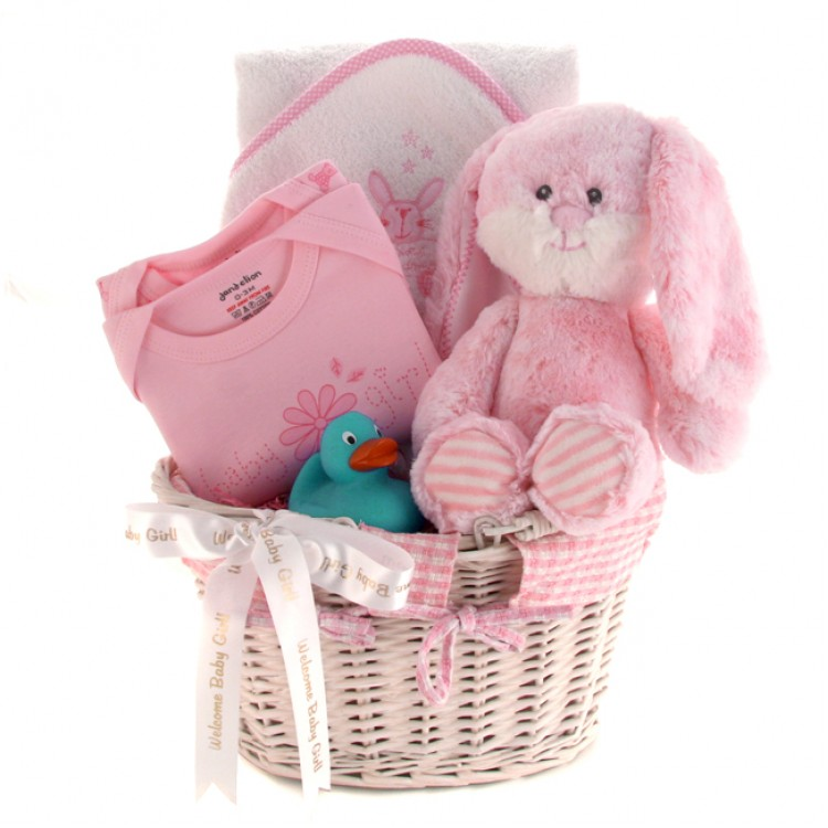 Baby Gift Delivery Uk : Welcome baby girl gift basket