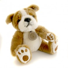 Hampers and Gifts to the UK - Send the Forever Puppy - Boxer