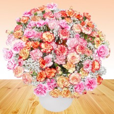 Hampers and Gifts to the UK - Send the Carnation Paradise