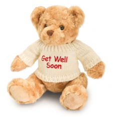 Hampers and Gifts to the UK - Send the Get Well Bear in Knitted Jumper