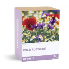 Hampers and Gifts to the UK - Send the Grow It Wild Flowers
