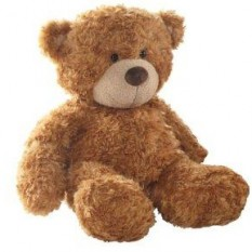 Hampers and Gifts to the UK - Send the Bonnie Brown Teddy Bear