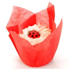 Hampers and Gifts to the UK - Send the Bath Tulip - Ladybird's Kiss