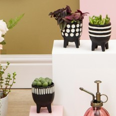 Hampers and Gifts to the UK - Send the Set of Scandi Boho Little Planters