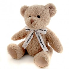 Hampers and Gifts to the UK - Send the Thinking of You Teddy Bear