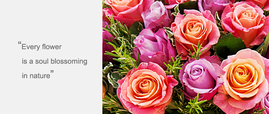 Follow these simple household tips to keep flowers fresh longer...