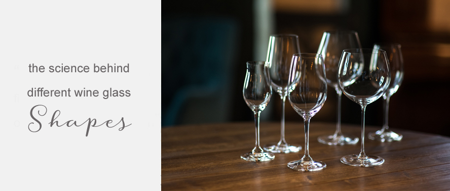 Wine Glass Shapes and Sizes... what type of glass should you use?